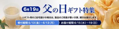 Top_chichinohi16