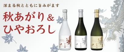 Title_akiagari